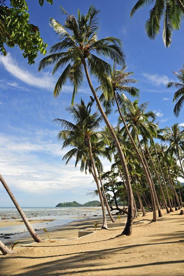 chang海岛ko泰国 免版税图库摄影