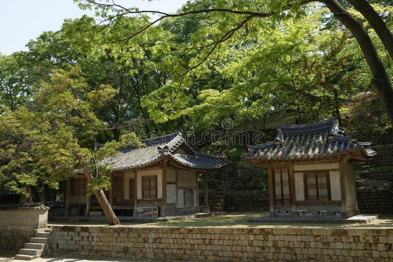 Changdeok宫殿-神秘园,韩国 免版税库存照片