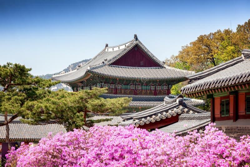 Changdeokgung, pałac królewski w Seul, Tajny ogród obrazy stock