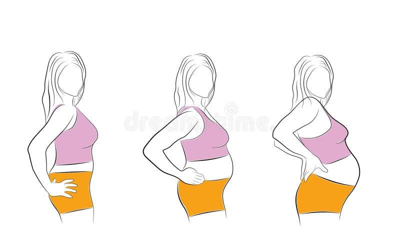 Changement du corps du ` s de femme pendant les étapes de la grossesse Illustration de vecteur illustration libre de droits