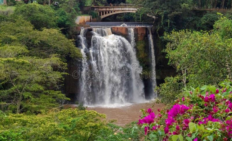 Chania понижается в Thika Кению Африку стоковые фото