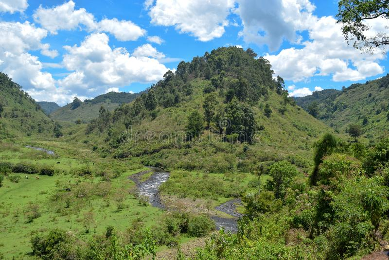Chania River in Aberdare Ranges, Kenya. Chania River in Nyeri County, Aberdare Ranges, Kenya royalty free stock photos