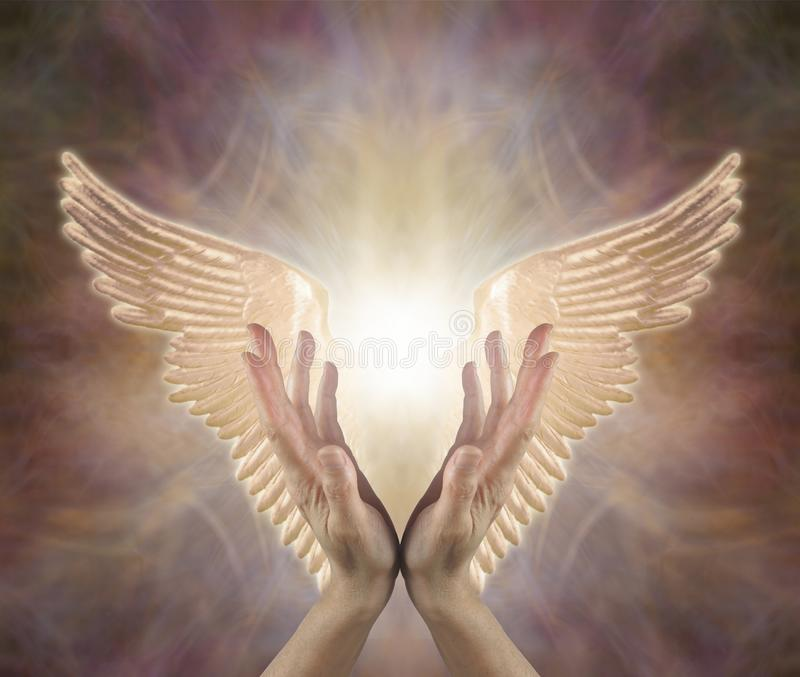 Channelling Angelic Golden Healing Energy stock image