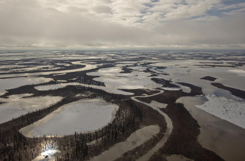 Channels of the Mackenzie River Delta, NWT, Canada royalty free stock photos