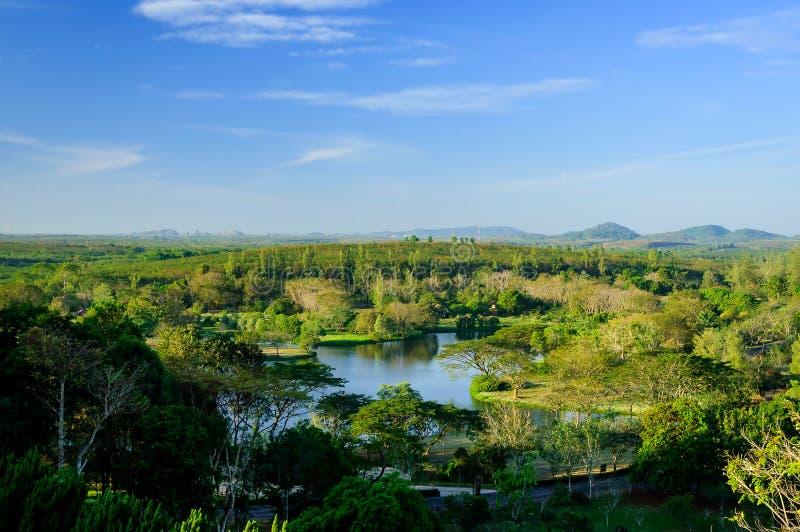 Chantaburi skog i Thailand royaltyfria bilder