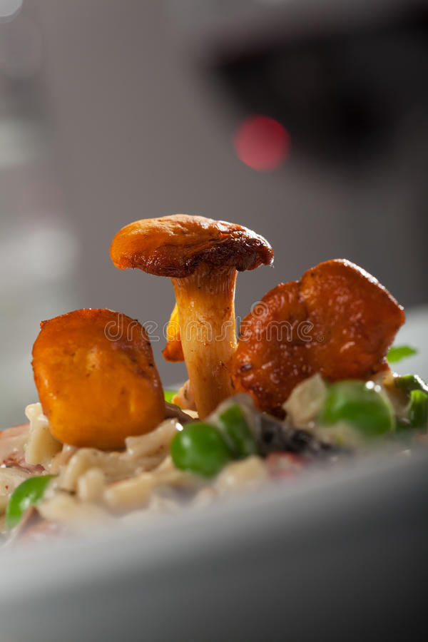 Download Chanterelle stock image. Image of cuisine, spaghetti - 26013617