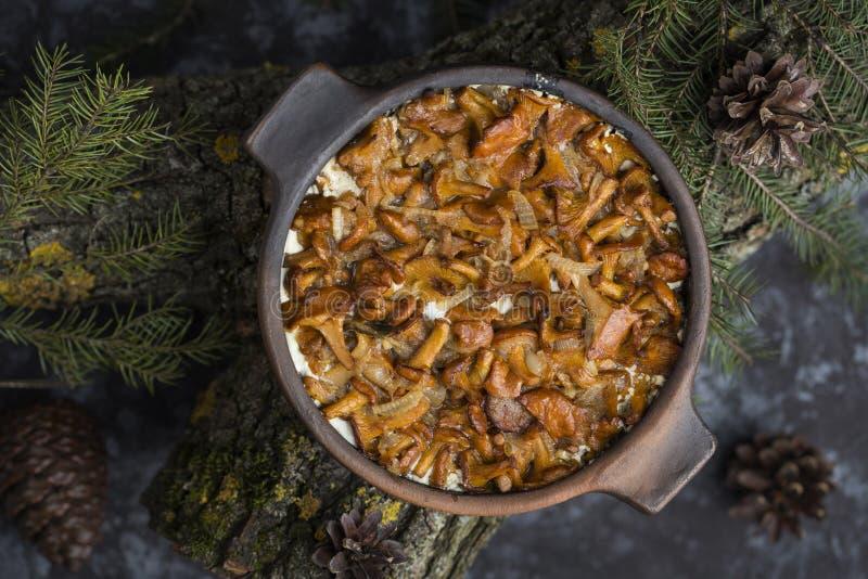 Chanterelles cuites au four en crème sure image libre de droits