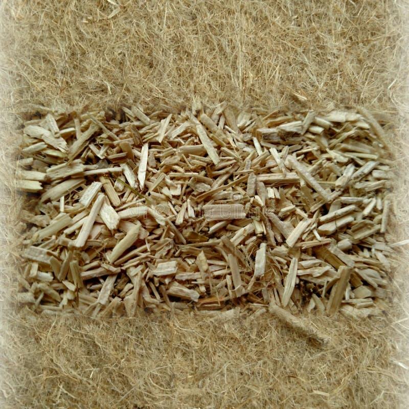 Chanvre industriel - fibres crues photo stock