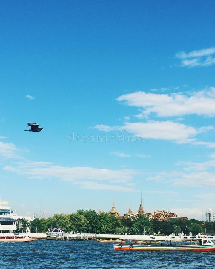 Chao Phraya河 免版税图库摄影