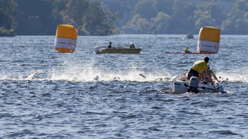 Chaos van zwemmende wapens in het water en de boten stock foto's