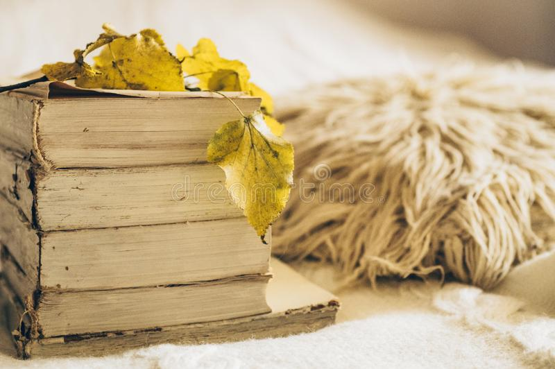 Chaotic stack of old books pastel colors with autumn leaves. Concept autumn winter selective focus with copy space. Background royalty free stock images