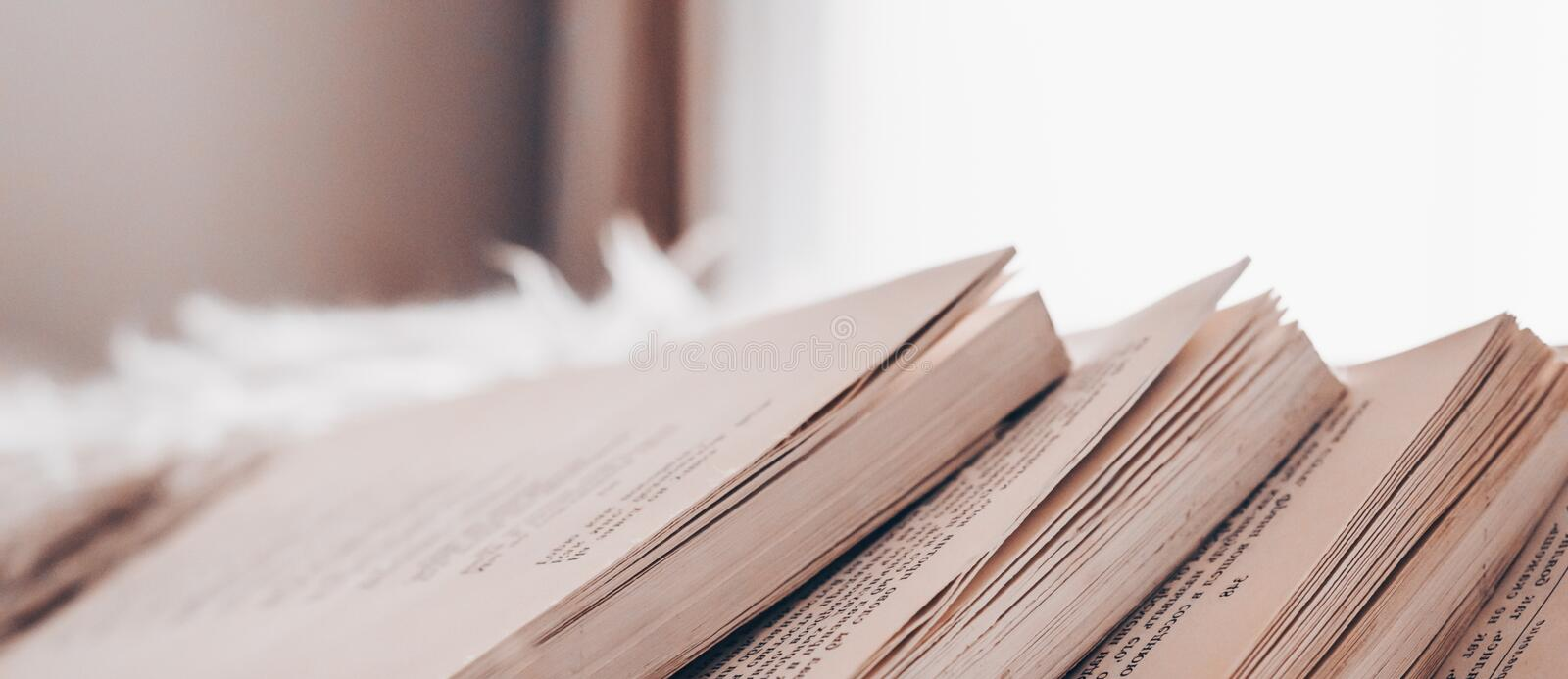 Chaotic stack of old books pastel colors, selective focus with copy space. Background from books. Books close up. royalty free stock photography