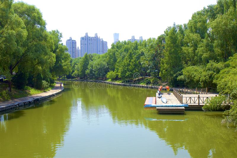 Chaoyang park, Beijing. Beautiful nature in Chaoyang park, Beijing, China royalty free stock photos