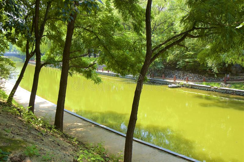 Chaoyang park, Beijing. Beautiful nature in Chaoyang park, Beijing, China stock photos