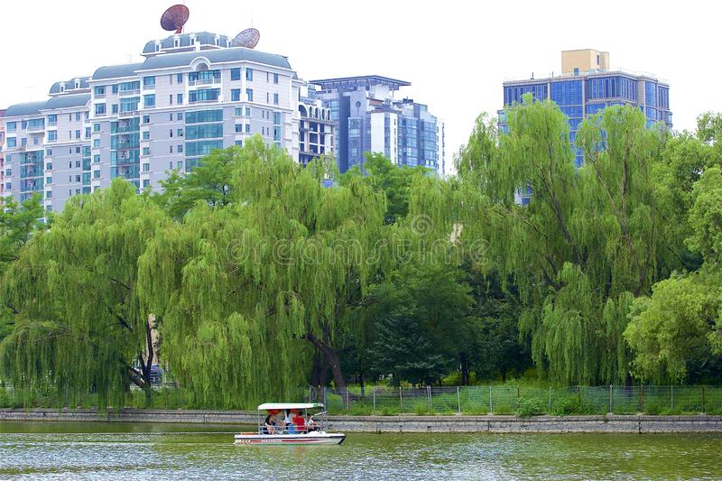 Chaoyang park, Beijing. Boating and Views in Chaoyang park, Beijing, China royalty free stock images