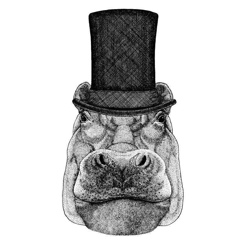Chapéu alto vestindo animal selvagem, cilindro Hipopótamo do moderno, hipopótamo, gigante, rio-cavalo ilustração royalty free