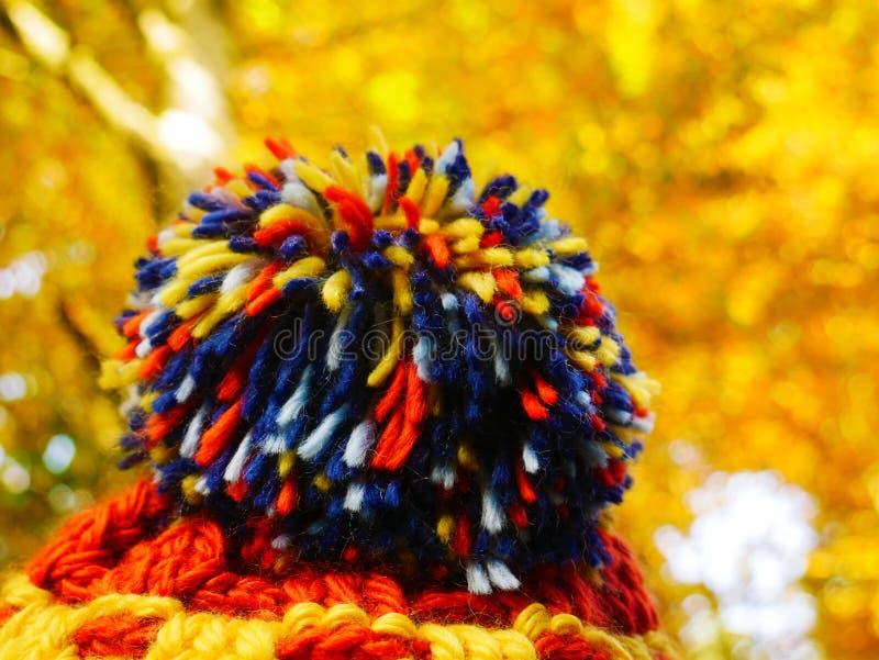 Chapéu com pompom colorido e folhas douradas no fundo fotos de stock royalty free