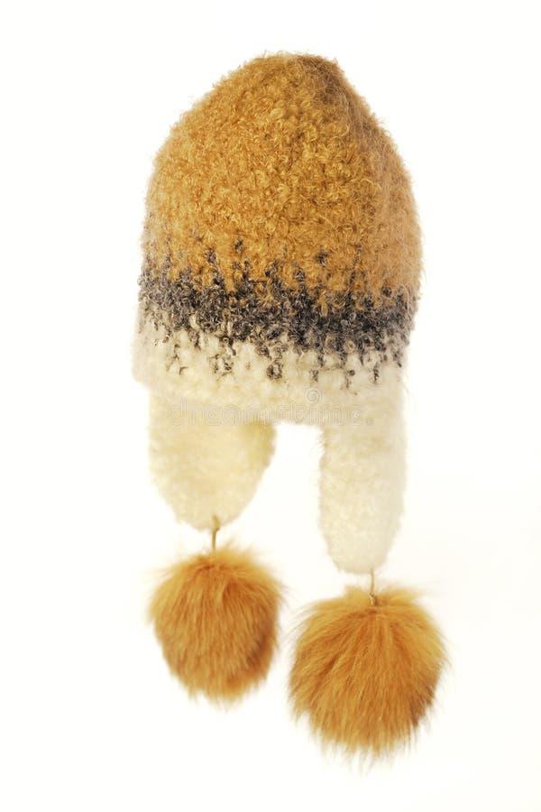 Download Chapéu De Lãs Do Inverno Com Pele Foto de Stock - Imagem de knit, marrom: 12810160