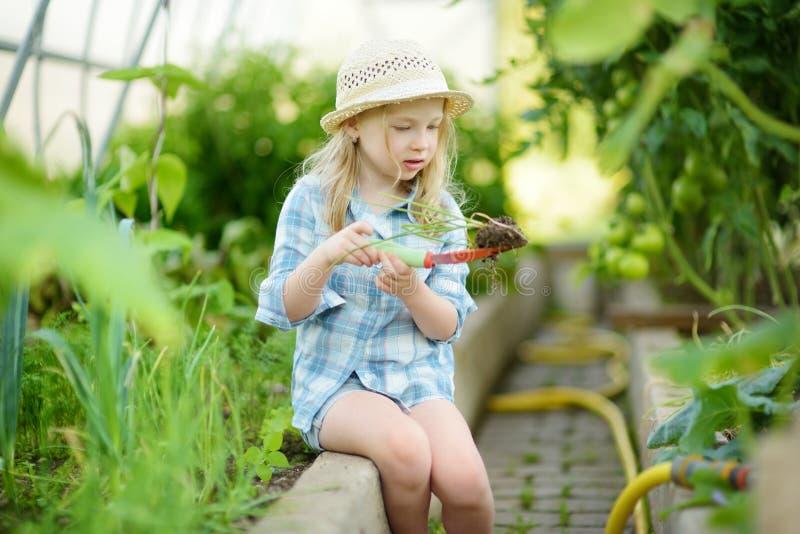Chapéu de palha vestindo da menina adorável que joga com suas ferramentas de jardim do brinquedo em uma estufa no dia de verão en imagem de stock