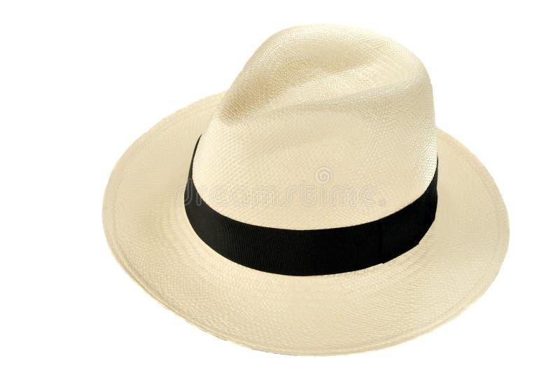 Chapéu de Panamá imagens de stock royalty free