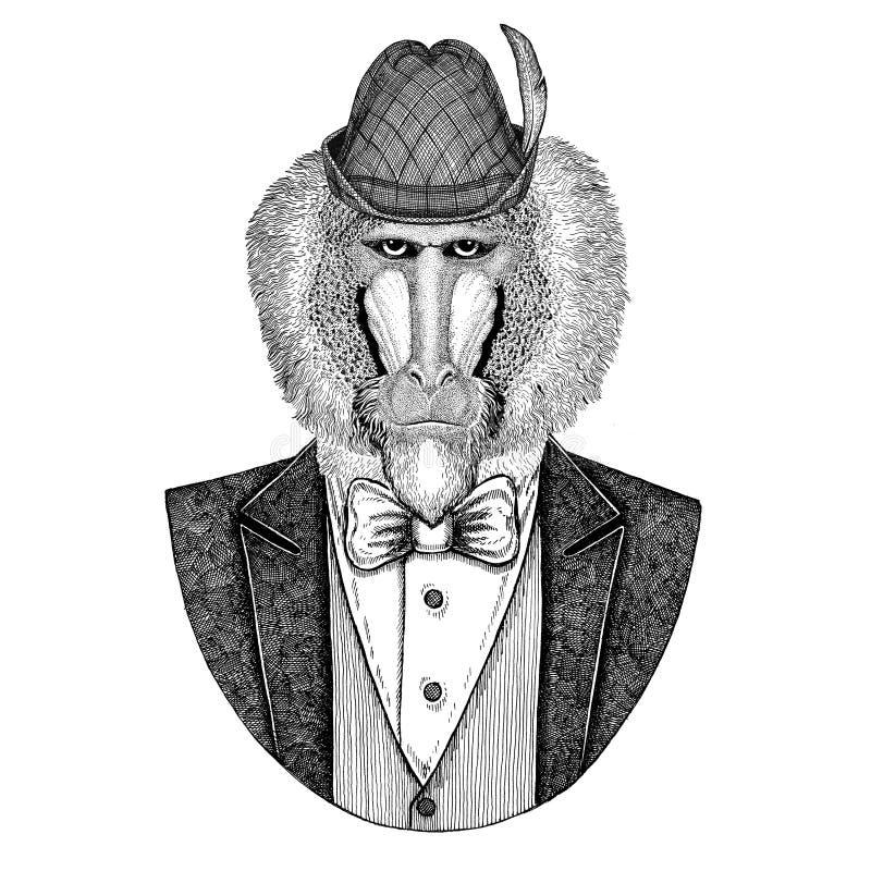 Chapéu nacional bávaro do chapéu de Tirol do alemão ilustração royalty free