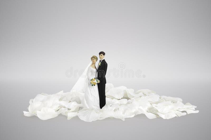 Chapéus de coco do bolo dos noivos do conceito do dia do casamento fotos de stock royalty free