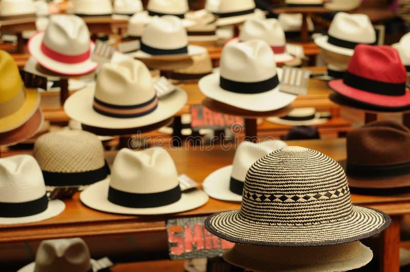 Chapéus de Equador, Panamá imagens de stock royalty free