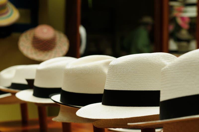Chapéus de Equador, Panamá imagem de stock royalty free