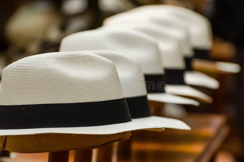 Chapéus de Panamá imagens de stock