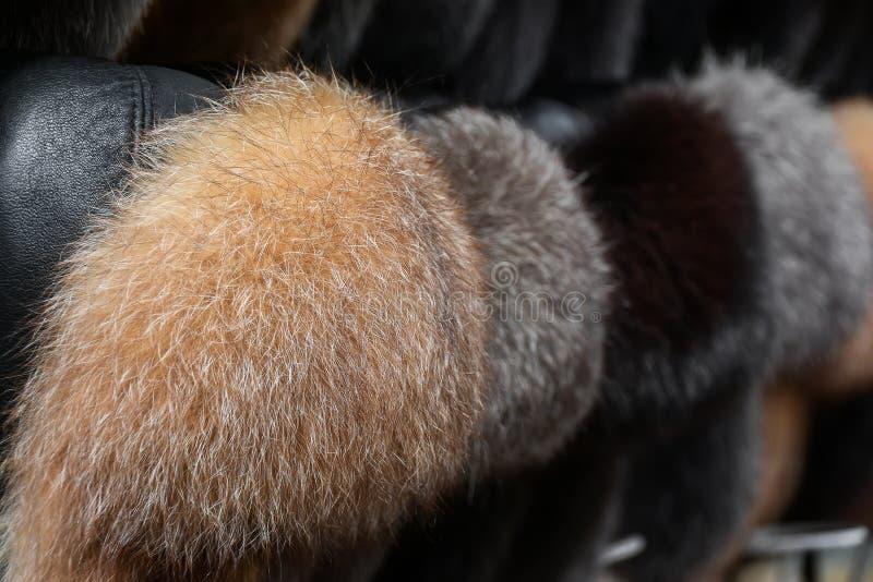 Chapéus forrado a pele fotografia de stock royalty free