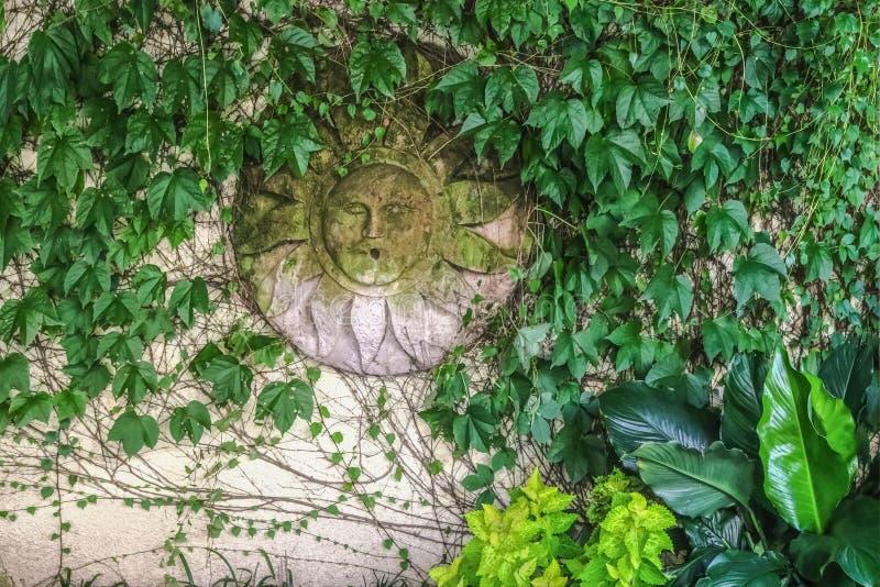 Chapa decorativa musgoso do homem verde ou do deus de sol que pendura na cerca coberta com as videiras - fundo do estuque fotos de stock royalty free