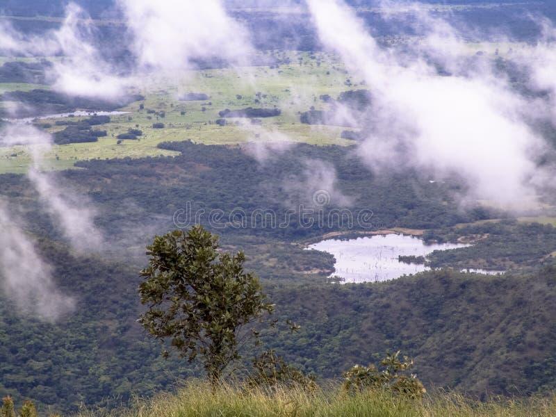 Chapada dos Guimaraes zdjęcie stock