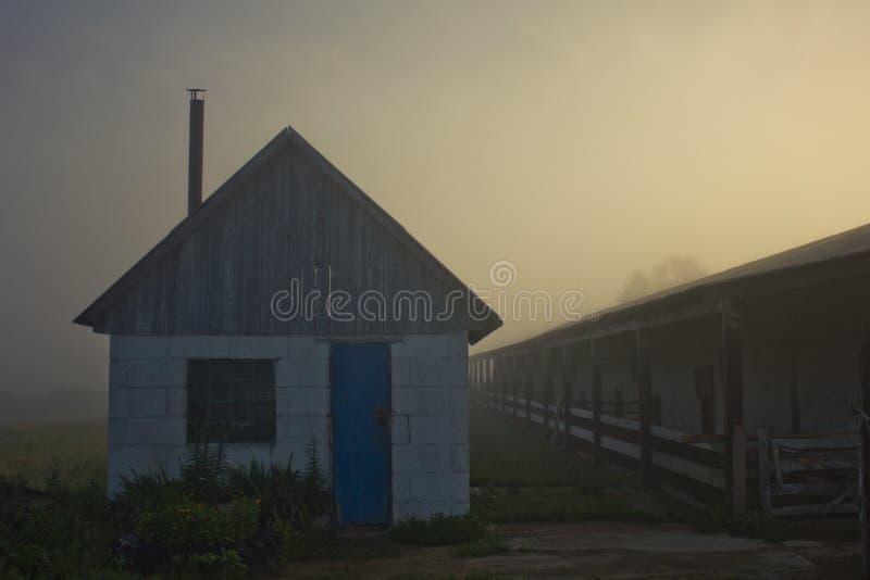 Chapeau dans le brouillard image libre de droits