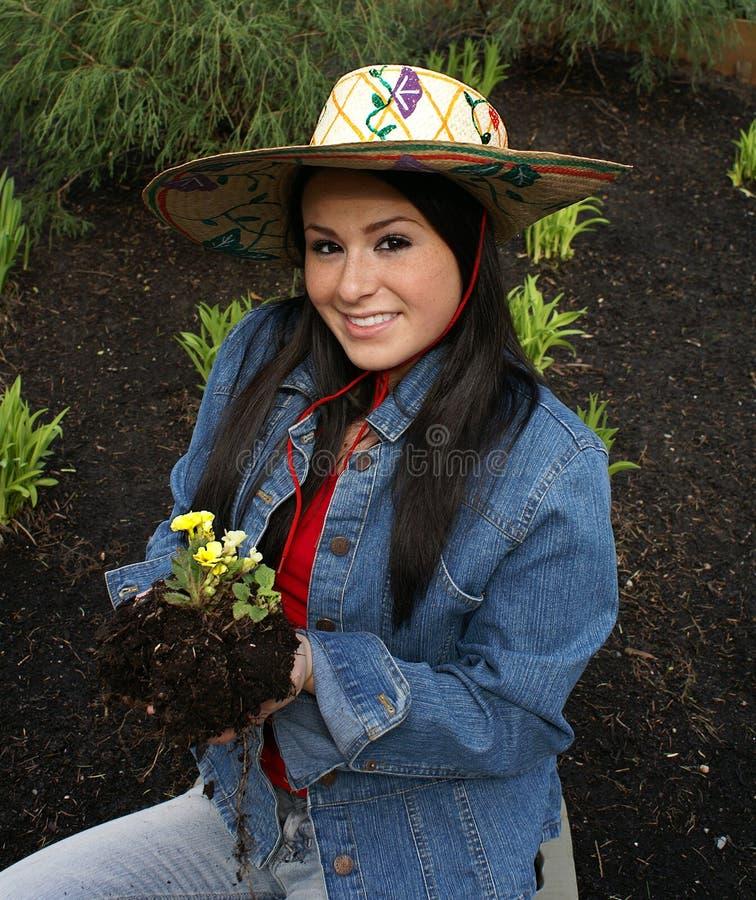 Chapeau de jardinage s'usant de fille plantant la primevère photographie stock