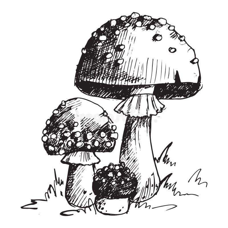 Chapeau différent de rouge d'illustration de vecteur de conception de style d'art de champignon de champignon d'agaric de mouche  illustration stock