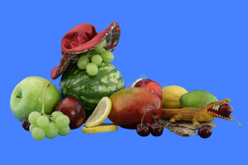 Chapeau et pastèque photos libres de droits