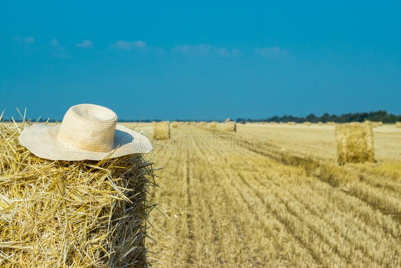 Chapeau fonctionnant d'un agriculteur sur une meule de foin Comcept d'agriculture Concept de moisson photographie stock