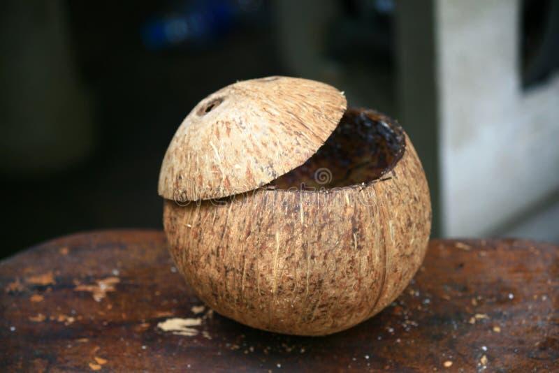 Chapeau principal ouvert de coquille de noix de coco images libres de droits