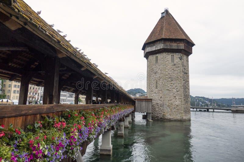 Chapel Bridge Luzern with tower royalty free stock image