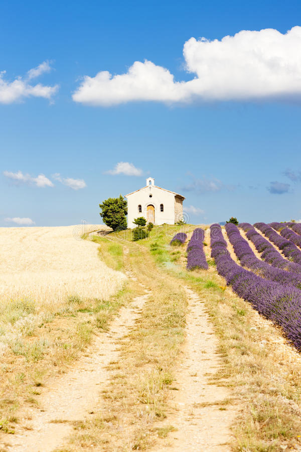 Download Chapel with lavender field stock image. Image of europe - 27009613