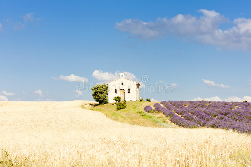 Download Chapel with lavender field stock image. Image of plateau - 27009621