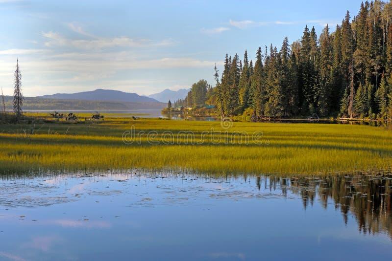 Chapman Lake Wilderness imagem de stock royalty free