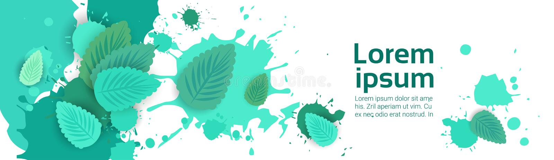 Chapoteo abstracto de la pintura y hoja de la menta fijada sobre el fondo blanco para el espacio y el texto de la copia libre illustration