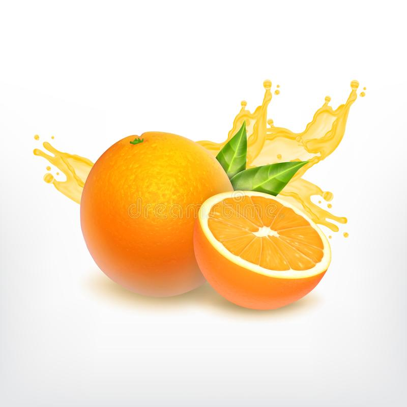 Chapoteo anaranjado de la fruta y del jugo ilustración del vector