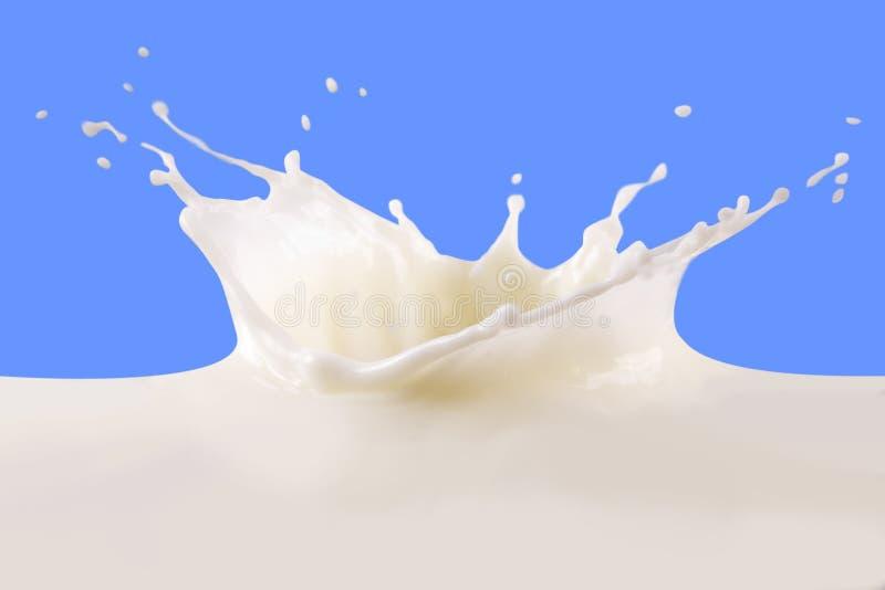 Chapoteo de la leche fotografía de archivo
