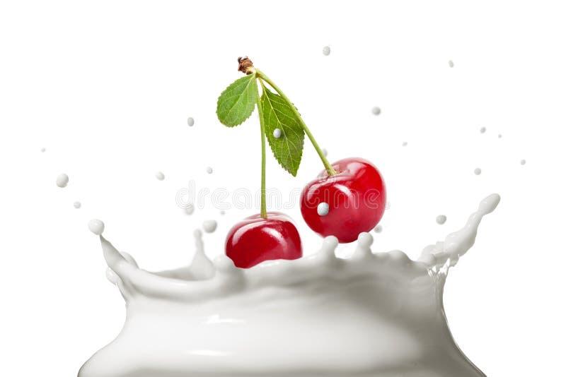 Chapoteo de la leche aislado en blanco imagen de archivo libre de regalías