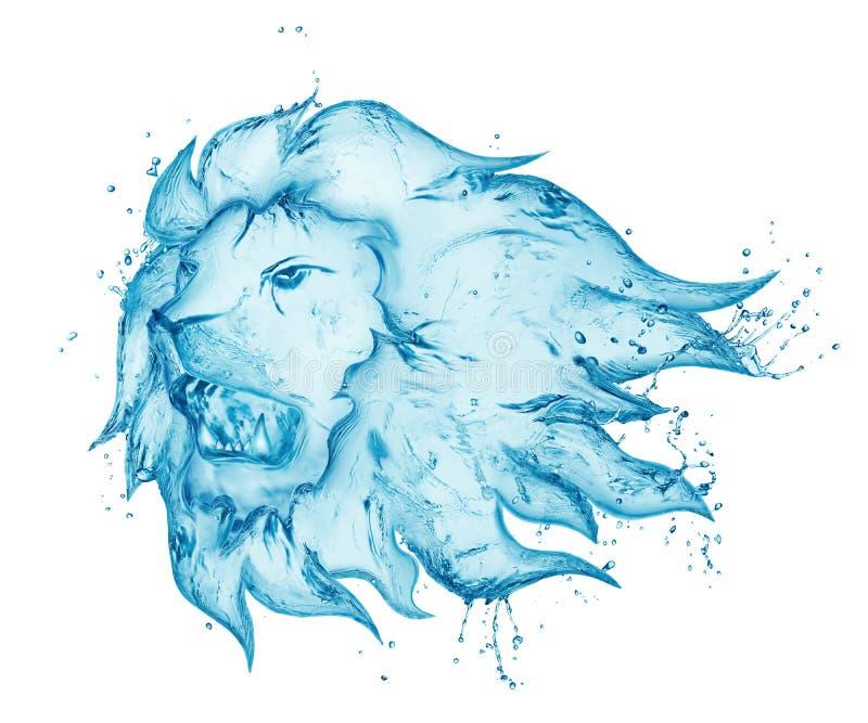 Chapoteo del agua del león el gruñir fotos de archivo