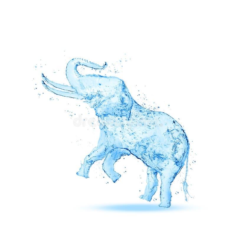 Chapoteo del agua del elefante fotos de archivo