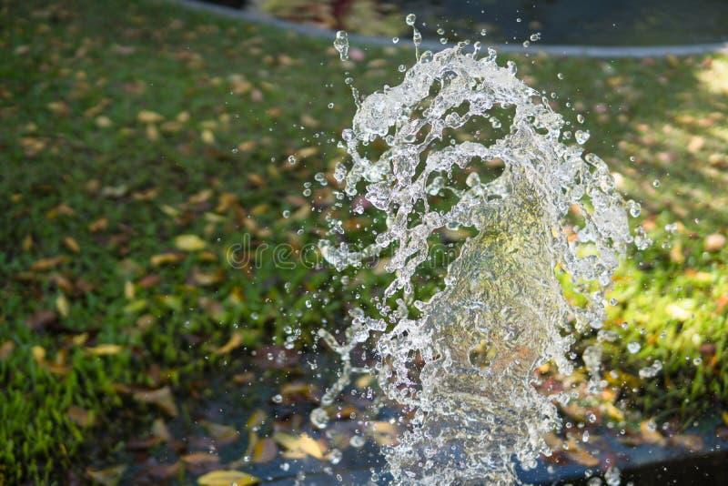 Chapoteo del agua en césped en el patio trasero imagenes de archivo