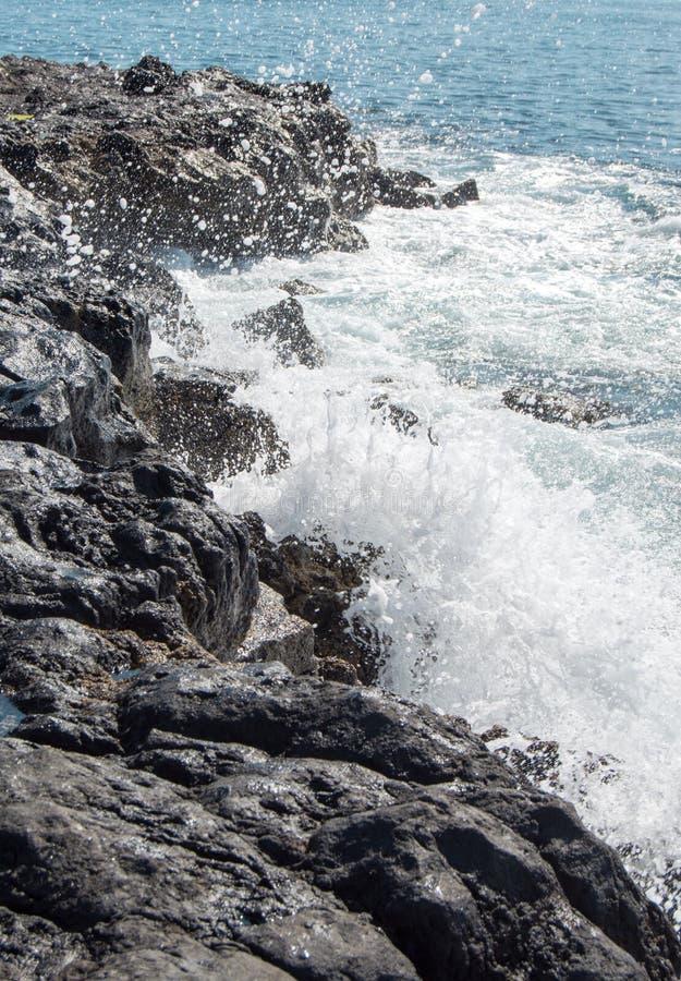 Chapoteo en la costa foto de archivo